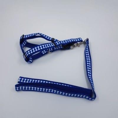 Nylon harnas en riem - blauw met witte botjes