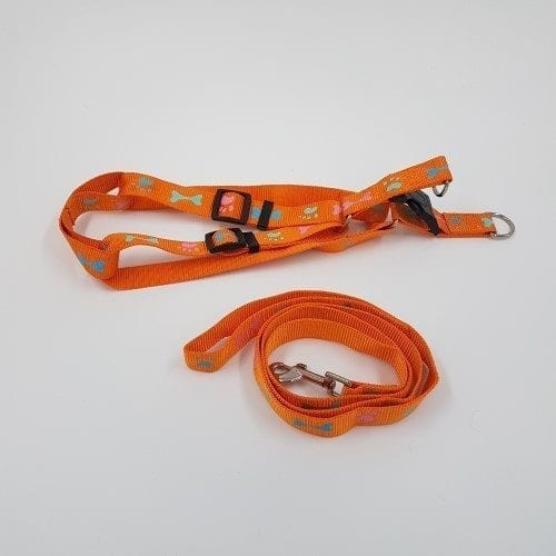 Nylon harnas en riem oranje met botjes en pootjes
